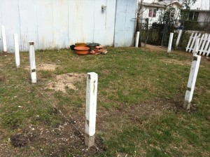 Fence posts with bracing removed. Much better.